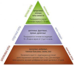 Пирамида нот в ароматах